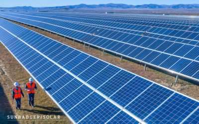7 Companies That Use Solar Energy & Why You Should Too