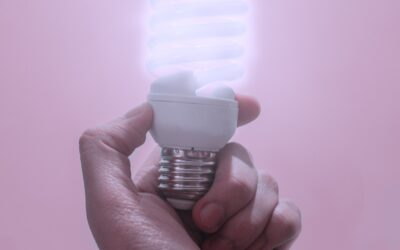 7 Energy Conservation Measures Every Homeowner Can Take Today