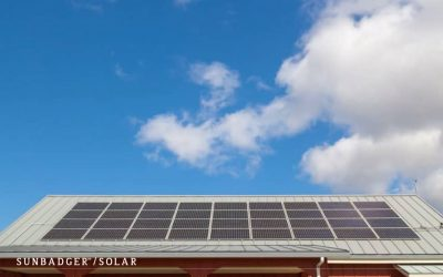 Types and Benefits of Renewable Energy Homeowners Can Take Advantage Of