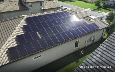 How Much Do Solar Panels Save On Energy? (And Are They Worth It?)