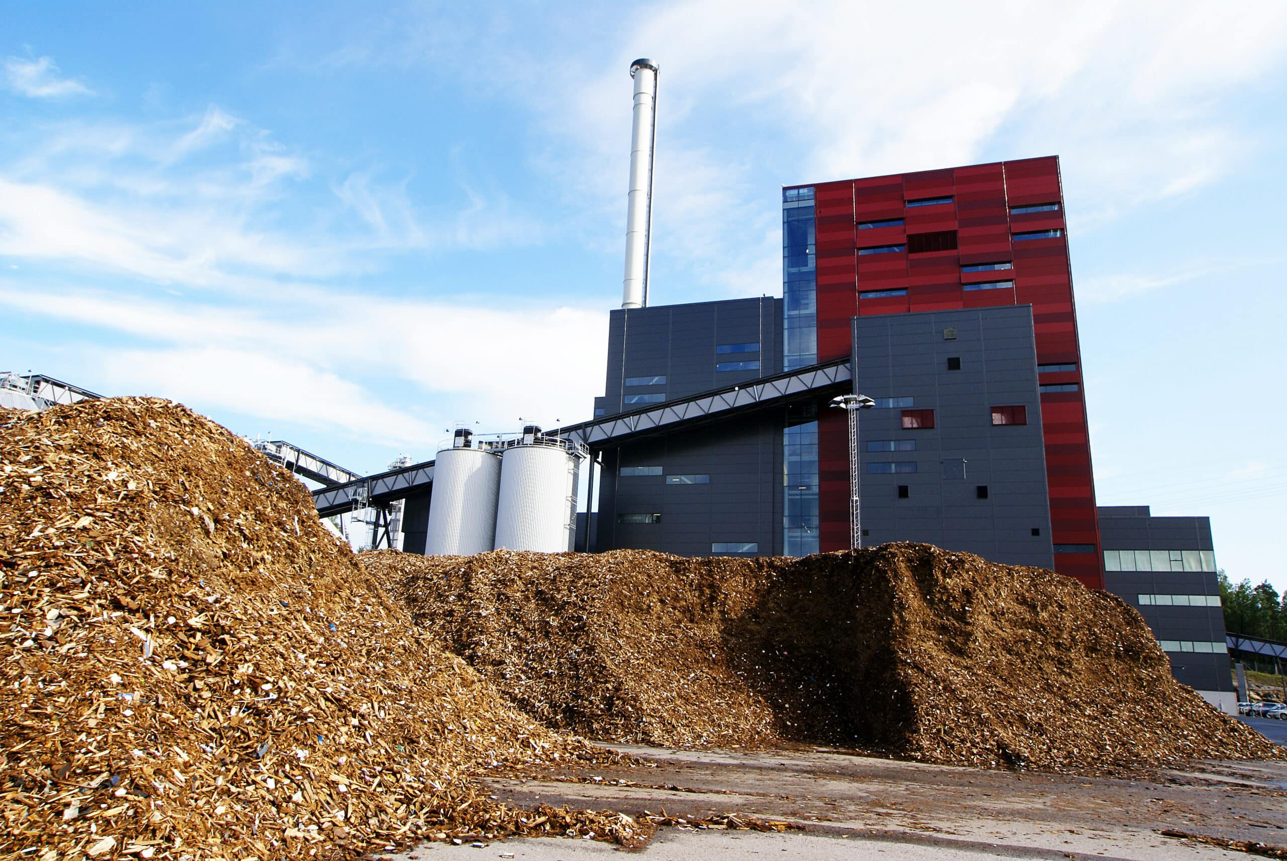 biomass power plant with storage for reusable energy